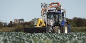 """""""Fanuc"""" robotai gali būti panaudojami net žemės ūkyje"""